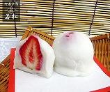 御菓子司 若松