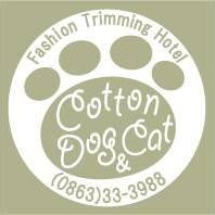 Cotton Dog & Cat